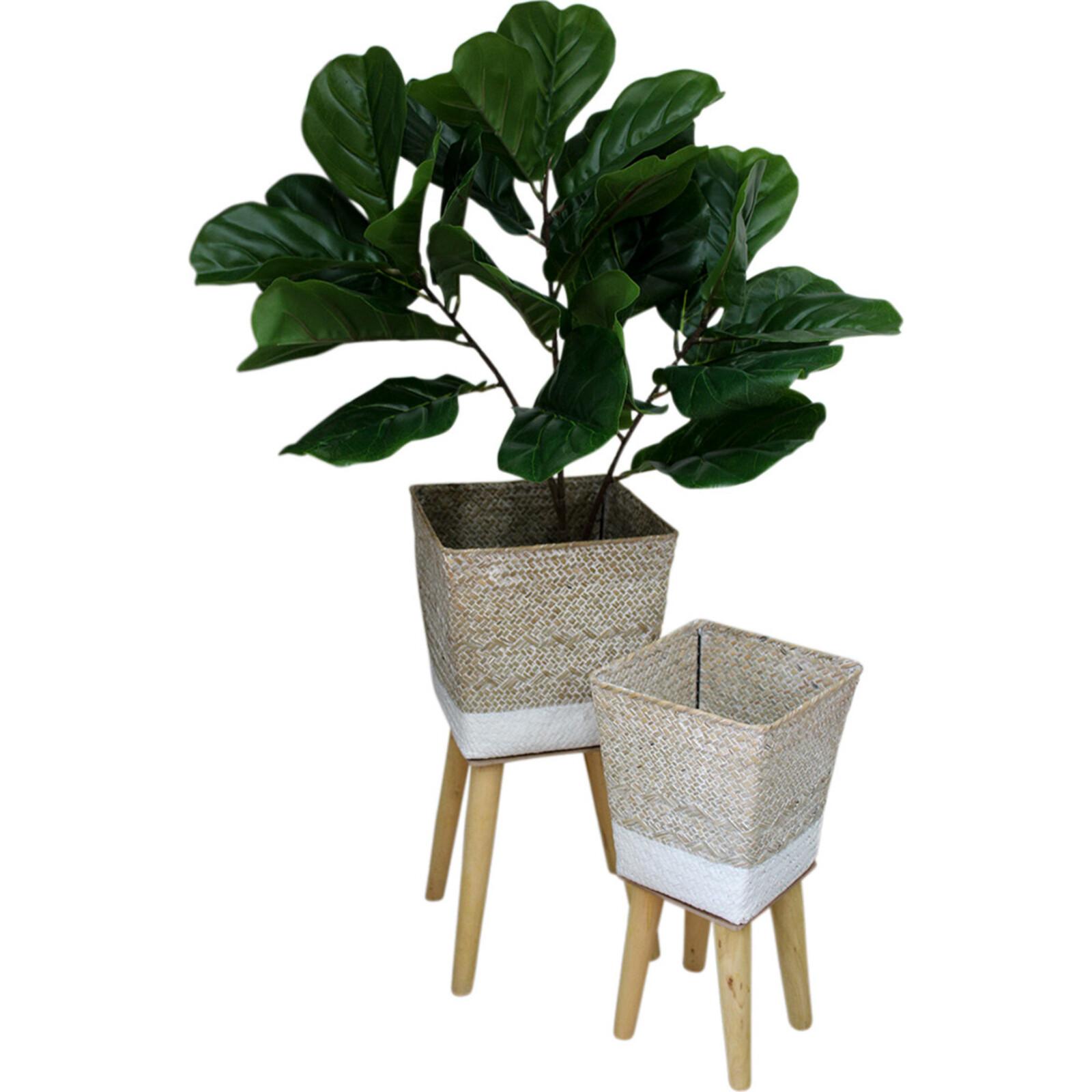 Planter S/2 Wash/White
